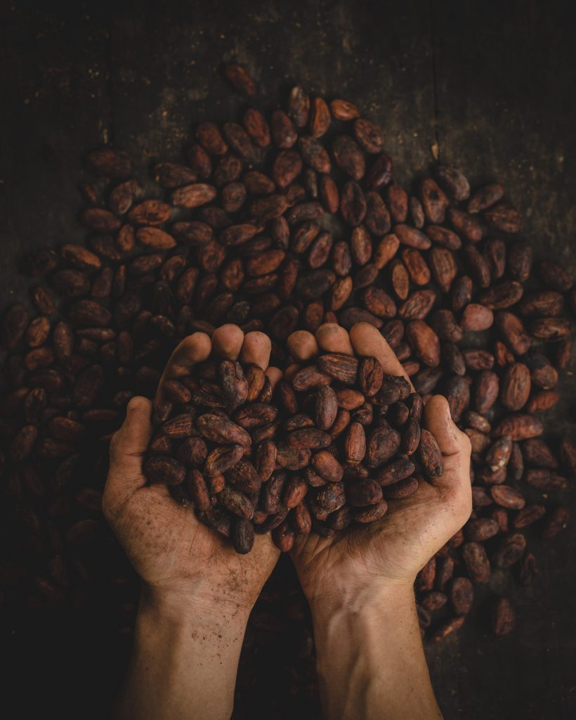 cacao bean health benefits
